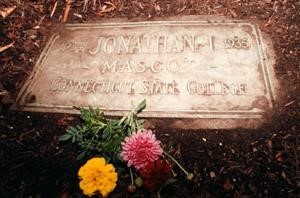 Photo of Jonathan's Grave Site