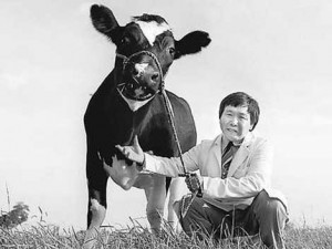 Photo of Xianshong with his cloned cow Amy